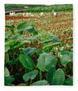 Yams Farm In Azores Fleece Blanket