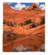 Yant Flat Canyon Reflections Fleece Blanket