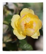 Yellow And Pink Tipped Rose Fleece Blanket