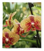 Yellow And Red Spotted Phalaenopsis Orchids Fleece Blanket
