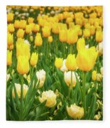 Yellow And White Tulips In Canberra In Spring Fleece Blanket