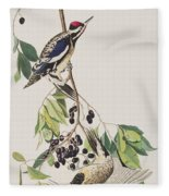 Yellow Bellied Woodpecker Fleece Blanket