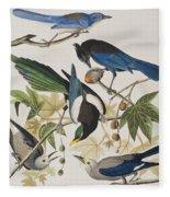 Yellow-billed Magpie Stellers Jay Ultramarine Jay Clark's Crow Fleece Blanket