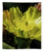 Yellow Cactus Blossom Fleece Blanket