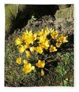 Yellow Crocus 1 Fleece Blanket