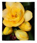 Yellow Crocus Closeup Fleece Blanket
