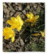 Yellow Crocus Fleece Blanket