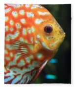 Yellow Fish Profile Fleece Blanket