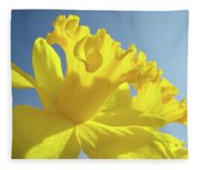 Yellow Flower Floral Daffodils Art Prints Spring Blue Sky Baslee Troutman Fleece Blanket