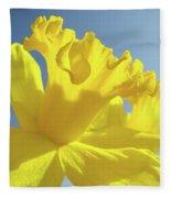 Yellow Flower Floral Daffodils Art Prints Spring Blue Sky Baslee Troutman Fleece Blanket