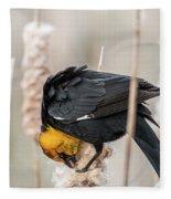 Yellow Headed Blackbird #7 Fleece Blanket