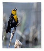 Yellow Headed Blackbird Fleece Blanket