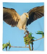 Yellow-headed Caracara Milvago Fleece Blanket