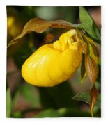 Yellow Lady's Slipper  Fleece Blanket