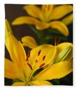 Yellow Lily Mirror Fleece Blanket