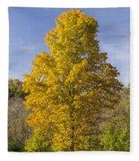 Yellow Maple Tree 1 Fleece Blanket