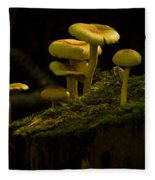 Yellow Mushrooms Fleece Blanket