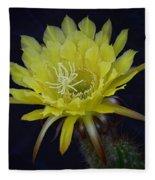 Yellow Night Blooming Cactus  Fleece Blanket