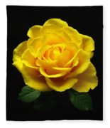 Yellow Rose 6 Fleece Blanket