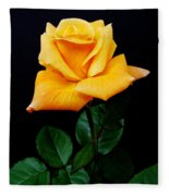 Yellow Rose Fleece Blanket