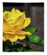 Yellow Rose Of Los Gatos Fleece Blanket