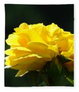 Yellow Rose Sunlit Rose Garden Landscape Art Baslee Troutman  Fleece Blanket