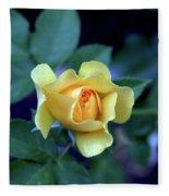 Yellow Rose With Purple Contrast 0357 H_2 Fleece Blanket