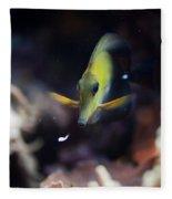 Yellow Spotted Aquarium Fish Fleece Blanket