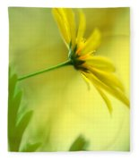 Yellow Spring Daisy Abstract By Kaye Menner Fleece Blanket