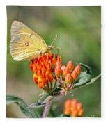 Yellow Sulphur Butterfly Fleece Blanket