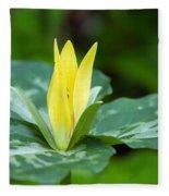 Yellow Trillium Flower Trillium Luteum Fleece Blanket