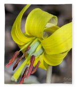 Yellow Trout Lily Fleece Blanket