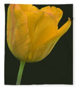 Yellow Tulip Open On Black Fleece Blanket