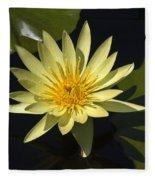 Yellow Water Lily Fleece Blanket