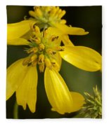 Yellow Wingstem Fleece Blanket