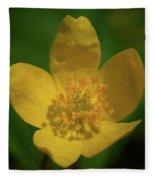 Yellow Wood Anemone 1 Fleece Blanket