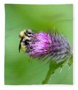 Yellowhead Bumblebee Fleece Blanket