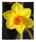 Yellows Of Jonquils Fleece Blanket