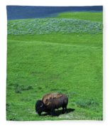 Yellowstone Bison  Fleece Blanket