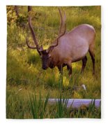 Yellowstone Bull Fleece Blanket