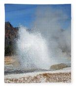 Yellowstone Features  Fleece Blanket