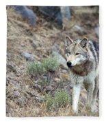 Yellowstone Grey Wolf Fleece Blanket