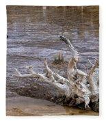 Yellowstone National Park 1 Fleece Blanket