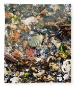 York Beach Shore Fleece Blanket