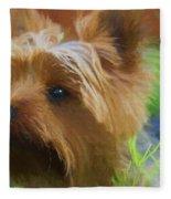 Yorkie In The Grass - Painting Fleece Blanket
