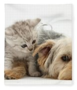 Yorkshire Terrier And Tabby Kitten Fleece Blanket