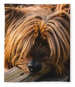 Yorkshire Terrier Biting Wood Fleece Blanket