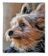 Yorkshire Terrier Dog Pose #2 Fleece Blanket