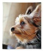 Yorkshire Terrier Dog Pose #5 Fleece Blanket