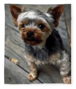 Yorkshire Terrier Puppy Fleece Blanket